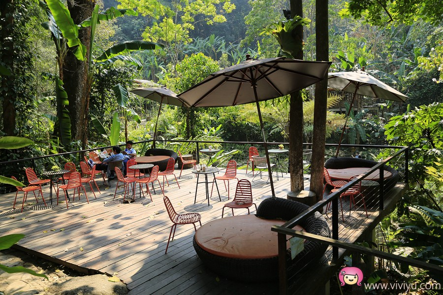 [清邁景點]巨樹咖啡民宿(The Giant Chiangmai).懸空座位超驚險~驚聲尖叫指數.勇氣大挑戰 @VIVIYU小世界