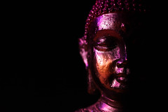 Buddha Statue in Low Key Light