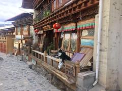 Altstadt Shangri-la