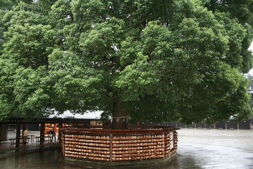 arbre de voeux japonais