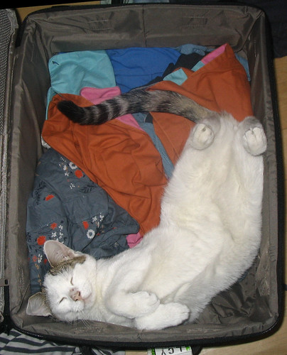 All packed...
