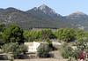 Barranc de Ràgil-Riu Verd-Torroselles – Tibi-12