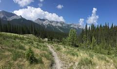 High Rocky Trail