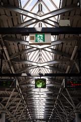Odaiba 台場|東京 Tokyo