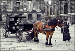 Taxi on Dam Square