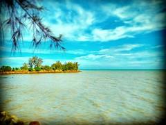 Pekan Tanjung Sepat, Tanjong Sepat, Selangor https://goo.gl/maps/AfFREnMsQDA2  #travel #holiday #Asian #Malaysia #Selangor #Tanjungsepat #travelMalaysia #holidayMalaysia #旅行 #度假 #亚洲 #马来西亚 #雪兰莪 #trip #马来西亚旅行 #traveling #beach #海滩 #Touristattractions #tree