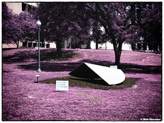 Sculpture on Lawn