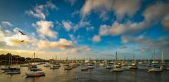 Monterey Harbor at Sundown
