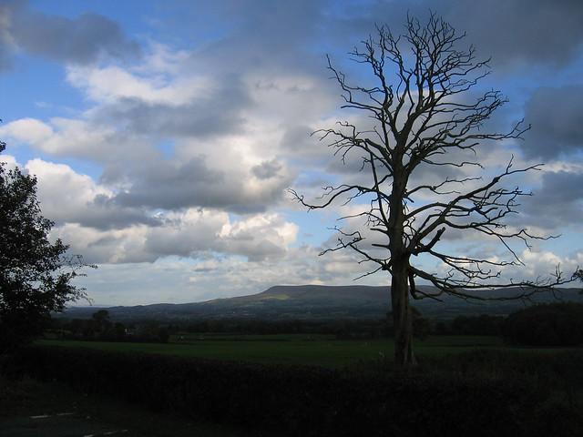 Zadarmo datovania Herefordshire
