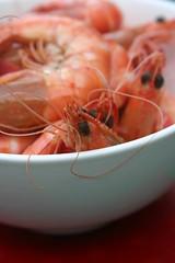 Prawns_or_Shrimp_Detail
