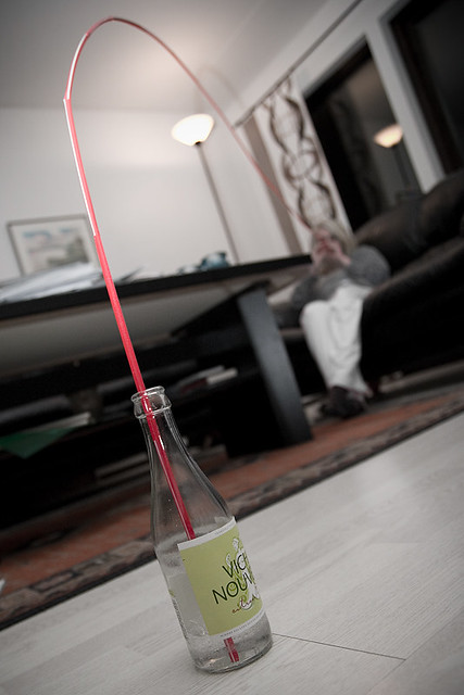 Worlds most longest straw flickr photo sharing, x 14 b
