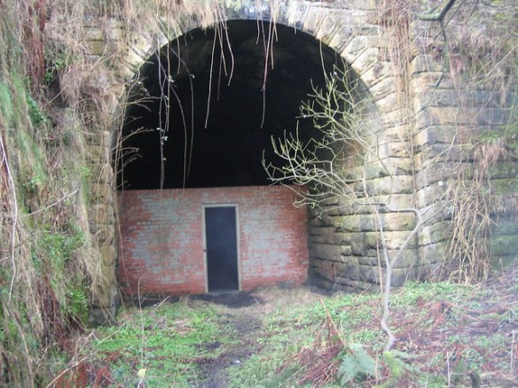 Kettleness Abandoned Railway Tunnel 5