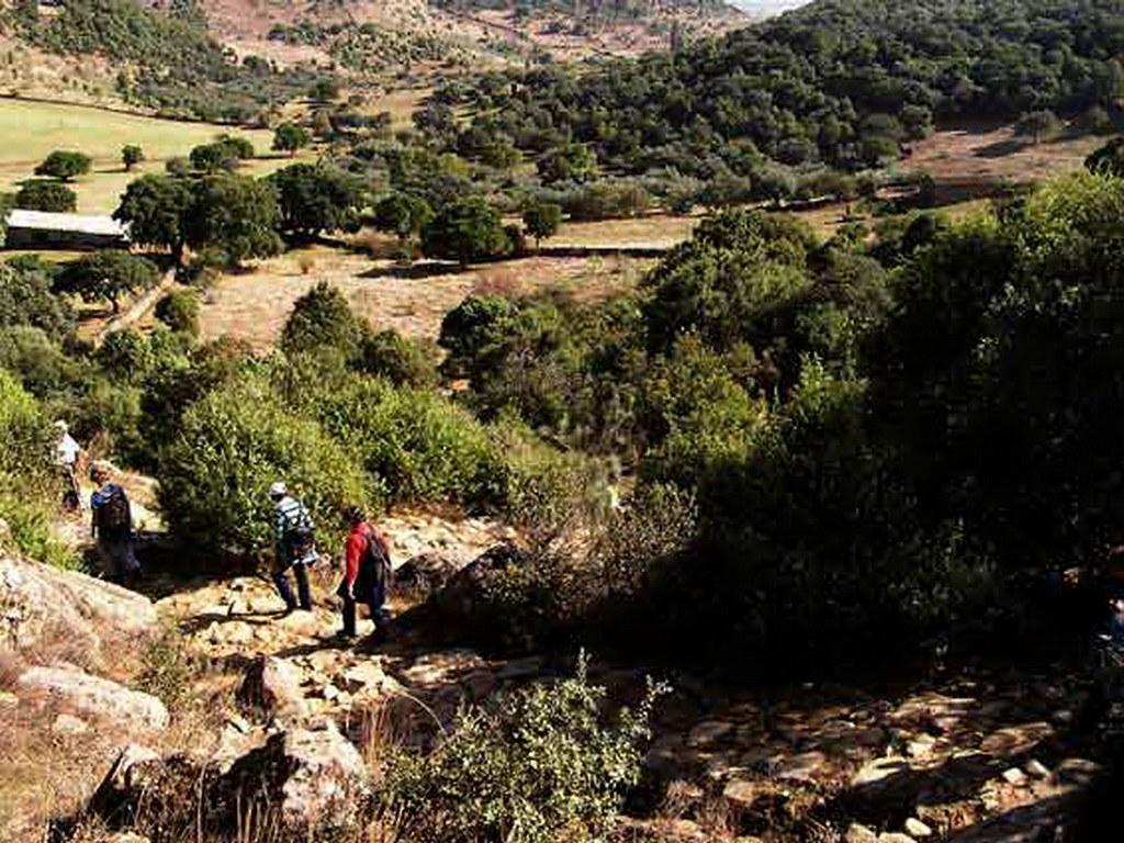 Sierra de San Vicente Toledo 17
