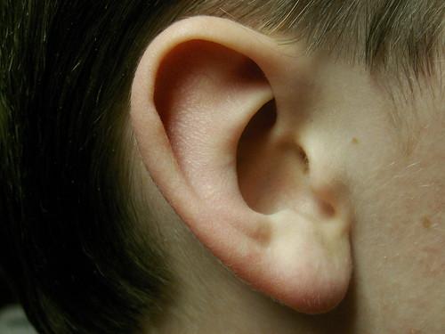 Ear, In Situ