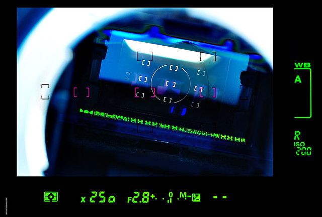 DSCF2621b copy.jpg