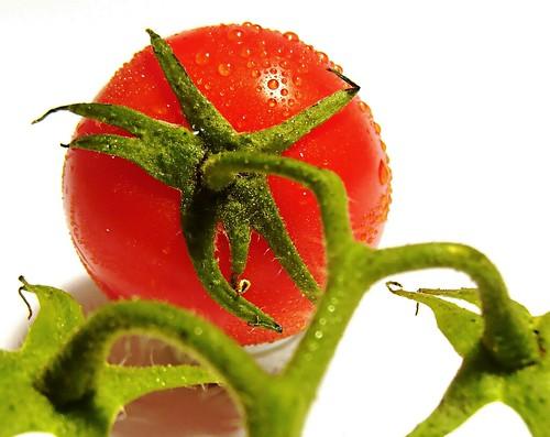 tomato avec aqua