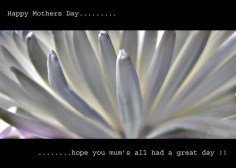 Mothers Day………