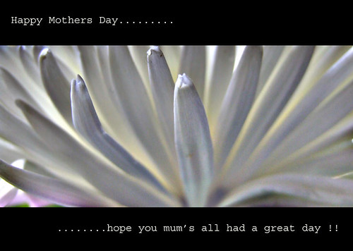 Mothers Day.........
