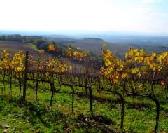 Toscany - Italy