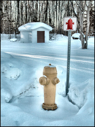 yellow hydrant advertising for a red hydrant girlfriend by gnawledge wurker