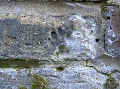 Post historic paw print