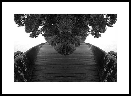 double boardwalk by gnawledge wurker