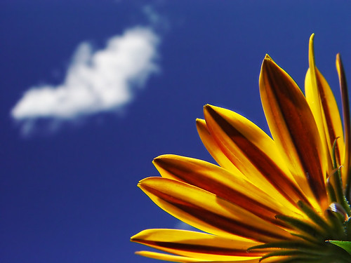 Blue-sky Thinking