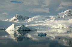 Antarctica - Neko Harbour