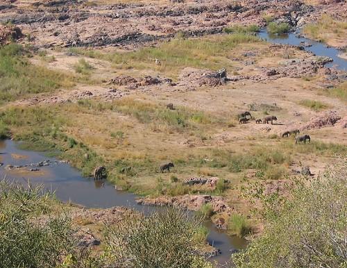View Olifants