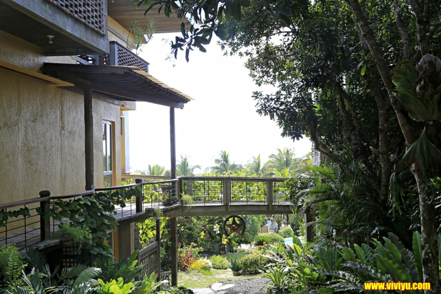 AIRASIA,amarela resort,亞摩瑞拉度假村,菲律賓,薄荷島 @VIVIYU小世界