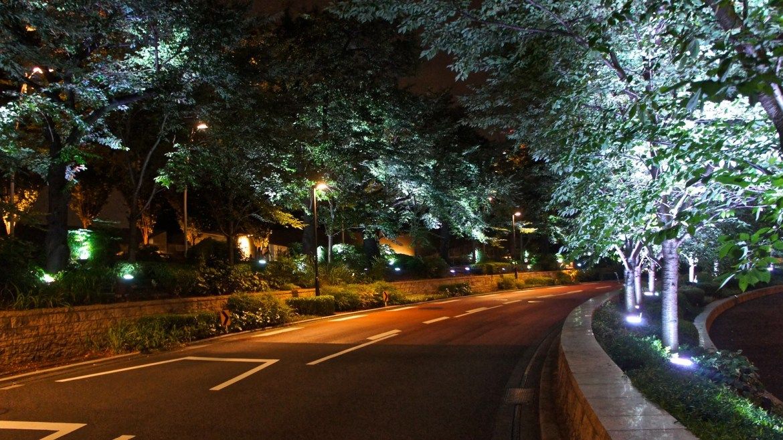 Tokyo Midtown : SUMMER LIGHT GARDEN