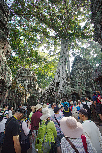"""Everybody trying to catch a glimpse of the """"Tomb Raider"""" tree at Ta Prohm."""