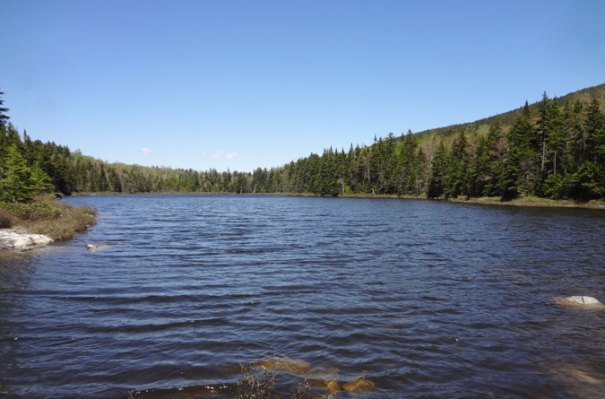 Page Pond AT NH