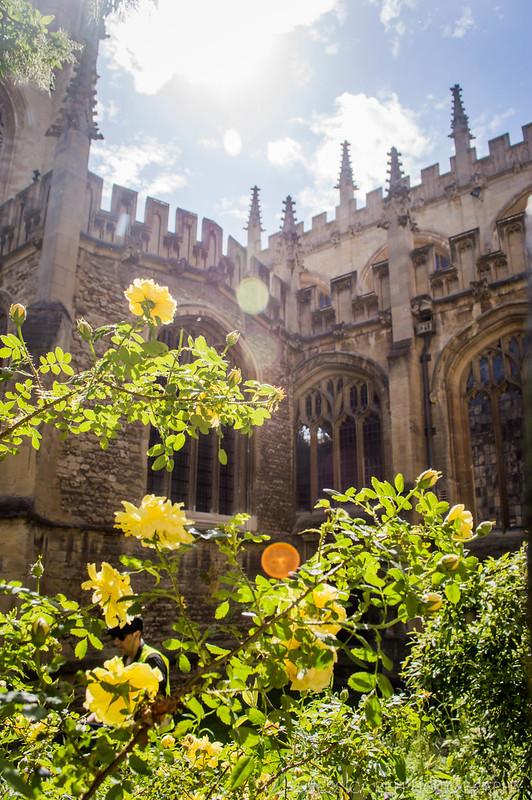 Oxford University United Kingdom