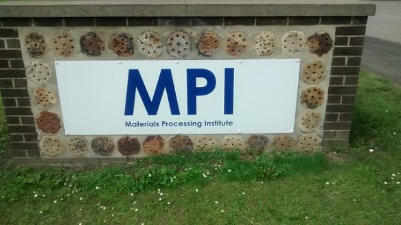 Pikelet Wall - MPI