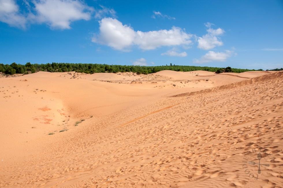 Red Sand Dunes Mui Ne, Vietnam