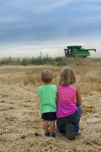 Z Crew: watchin' the combines go by