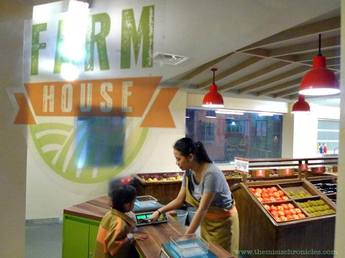 kidzania farm house store