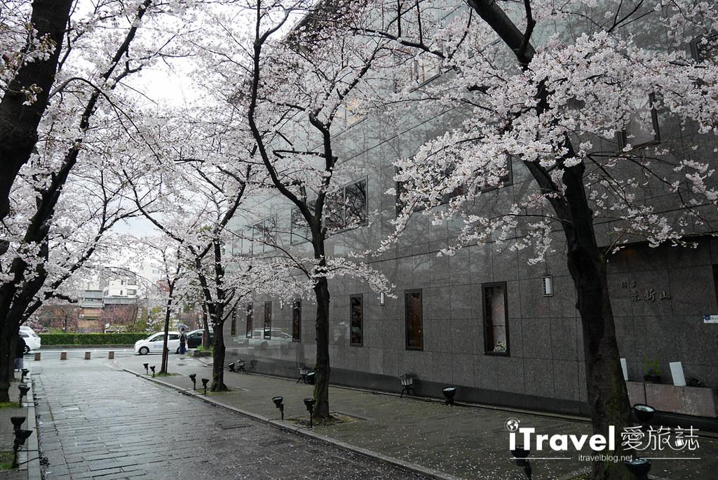 京都赏樱景点 祇园白川 (12)