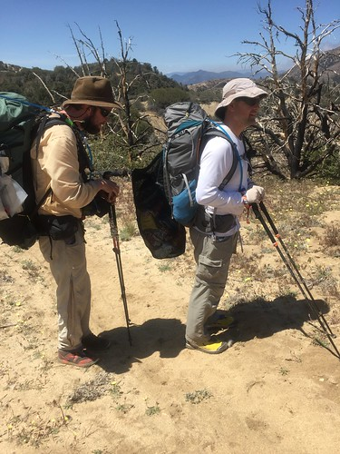 PCT Day 39