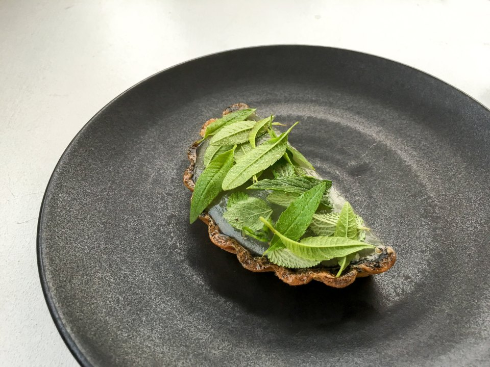 Caramelized buttermilk tart, noble fir, aromatic herbs at Kadeau, Bornholm