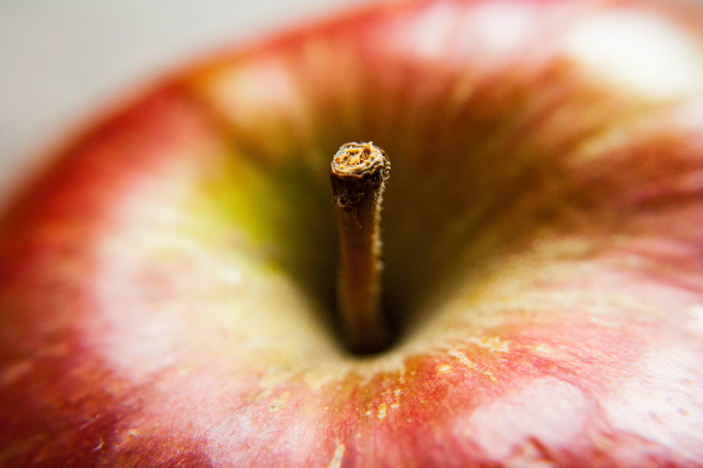 Imagen gratis de una manzana
