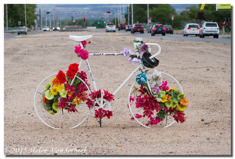 August Theme Day:  Bicycle