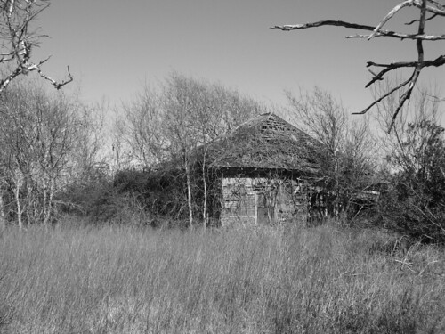 Forgotten Homestead