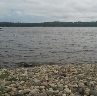 shoreline of rocks with lake behind, and row of forest/trees in distance with cloudy evening sky above.