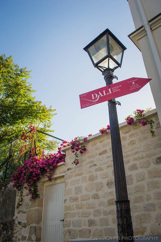 Dali Street Lamp Montmartre