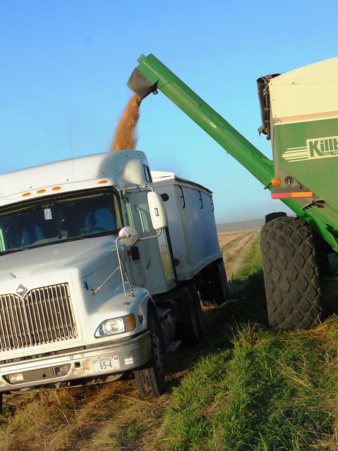 Grain cart unloading