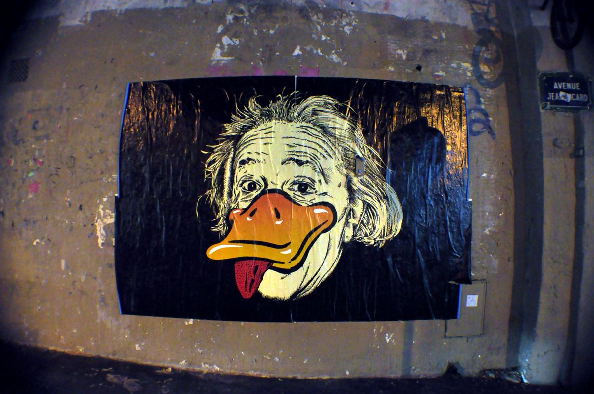 Einstein Duck