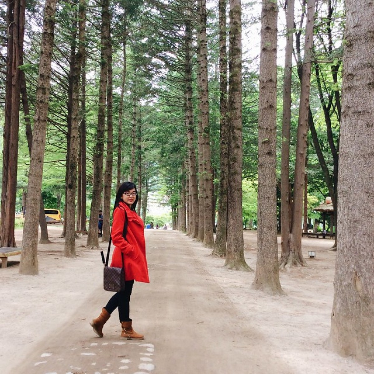 A girl in red coat between perfectly aligned pine trees