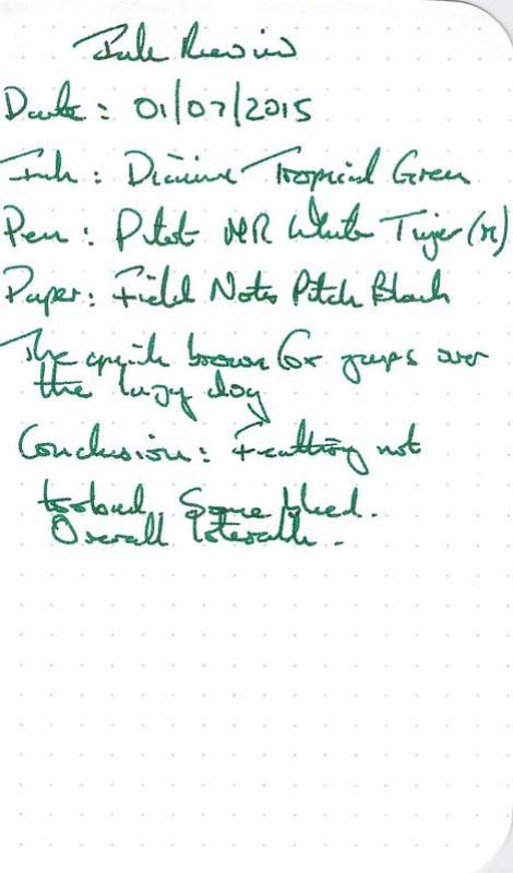 Diamine Anniversary Tropical Green - Field Notes